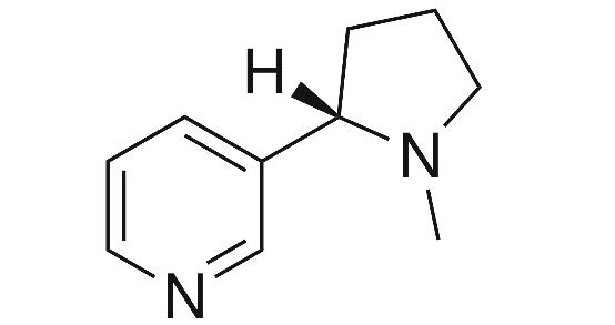 Nicotine Image