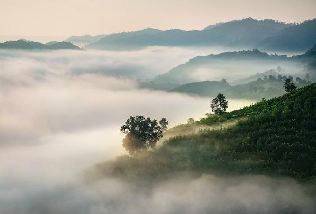 valley-in-mist