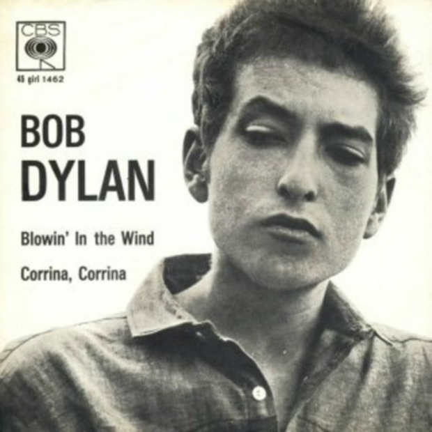 Bob Dylan Blowin' in the wind cover