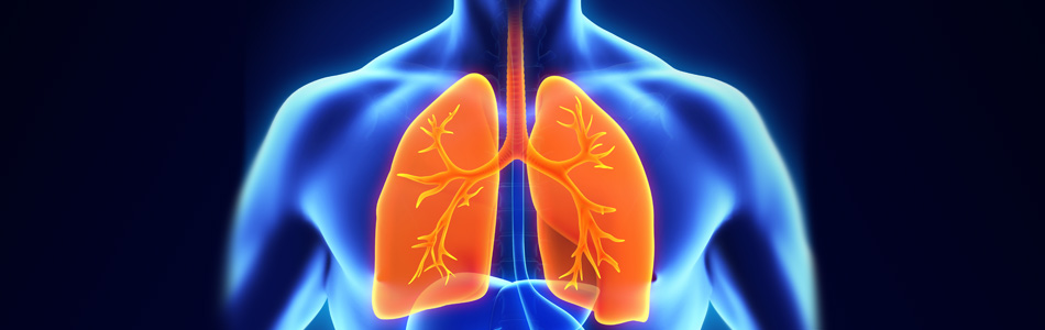 Long-term study shows no reduction in lung function of vapers - Vaped